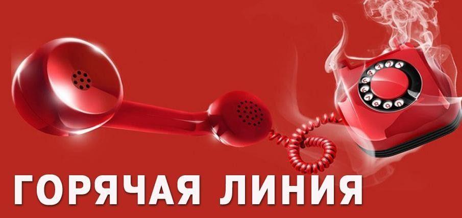 """Телефон """"горячей линии"""" открыт для пострадавших от туроператора «Жемчужная река»"""