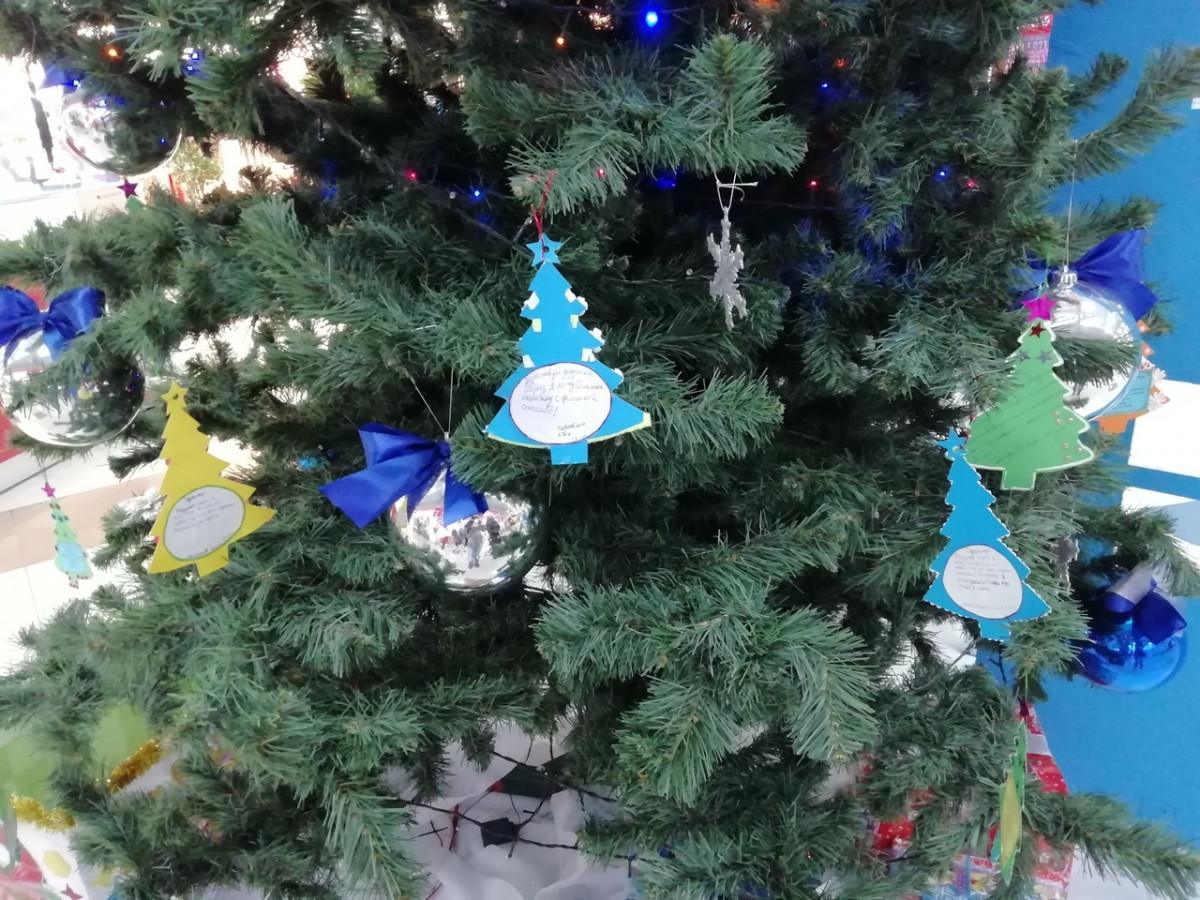 В Прокопьевске 11 елок мечты ждут горожан