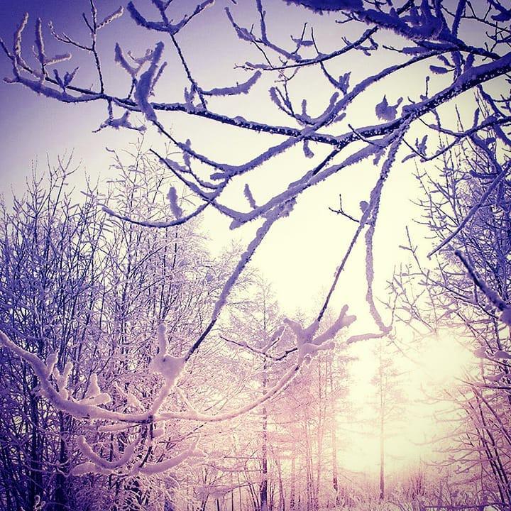 Какой будет погода в новогоднюю ночь и в праздничные дни